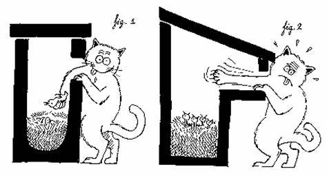 Cette image a un attribut alt vide; le nom du fichier est chat-nichoir.jpg